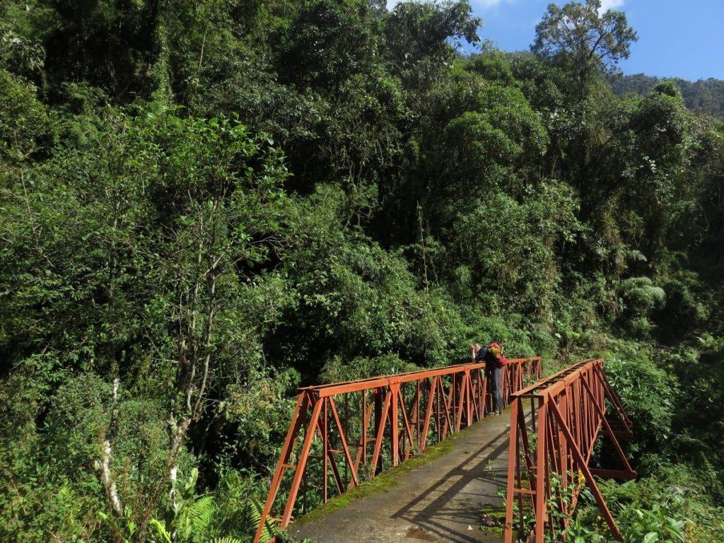 Puente en Peñas Blancas