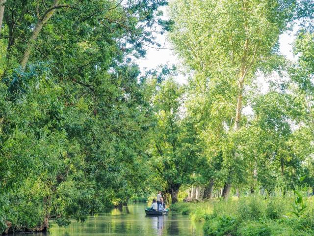 Ruta-por-las-marismas-de-Poitou