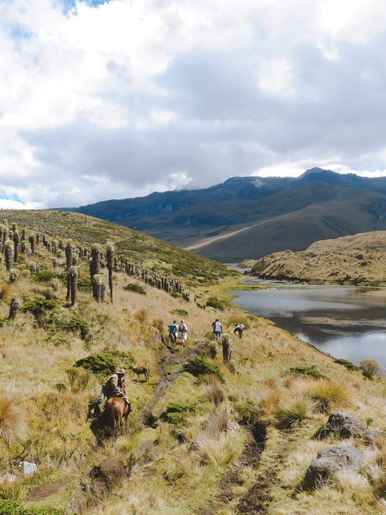 páramo colombiano parque de los nevados