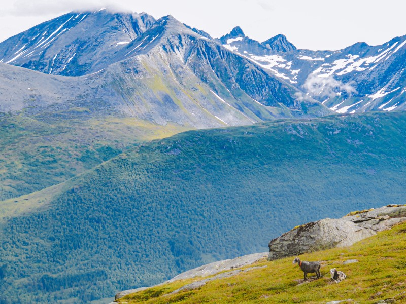 Romsdalseggen Noruega