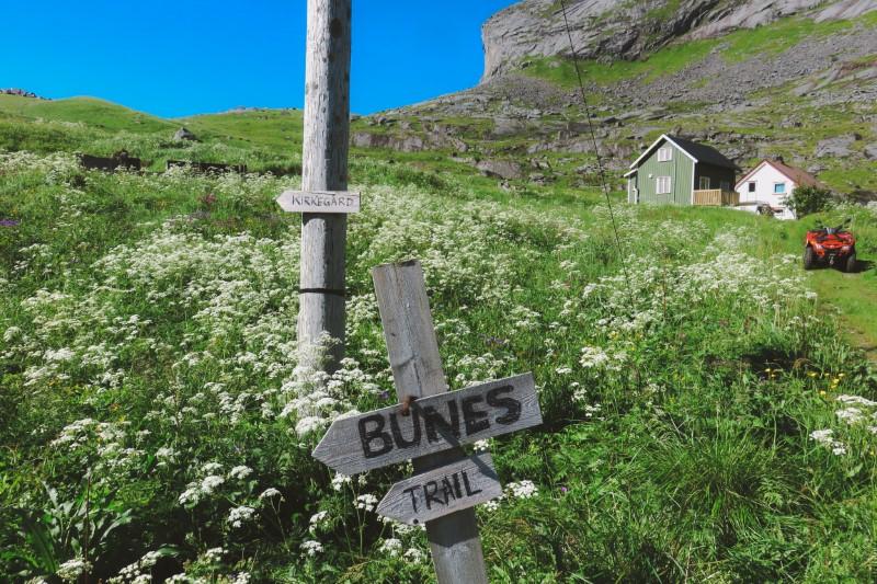 Camino a Bunes, Lofoten